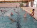 plivanje (12)