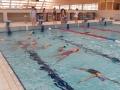 plivanje (2)