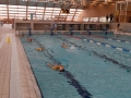plivanje (3)