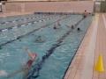 plivanje (9)